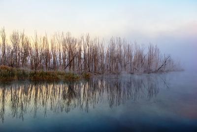 Autumn Morning and Fog on the River, the Autumn Season-Andriy Solovyov-Photographic Print