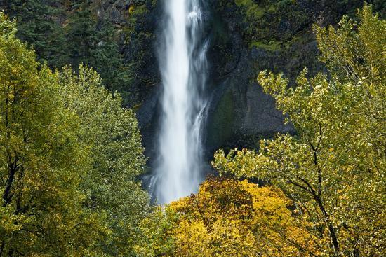 Autumn, Multnomah Falls, Columbia Gorge, Oregon, USA-Michel Hersen-Premium Photographic Print
