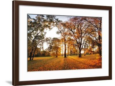 Autumn Panorama in Park-TTstudio-Framed Photographic Print