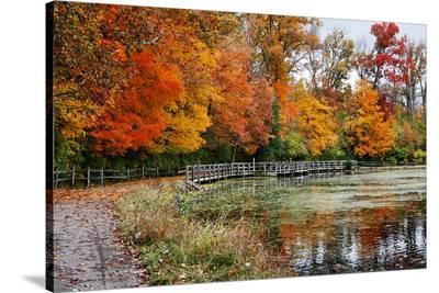 Autumn Park Sharon Woods Ohio--Stretched Canvas Print
