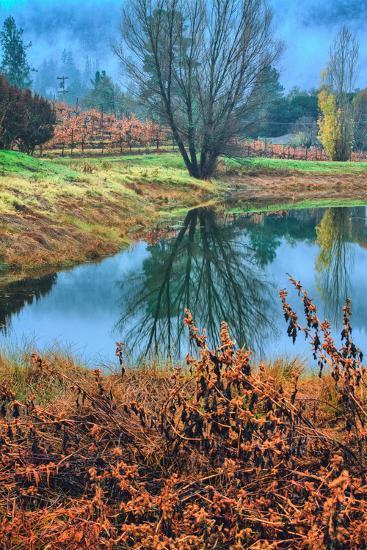 Autumn Pond Reflections, Calistoga, Napa Valley California-Vincent James-Photographic Print