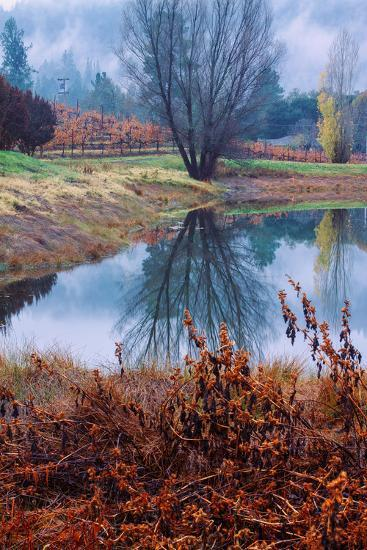Autumn Pond Reflections, Calistoga Napa Valley-Vincent James-Photographic Print