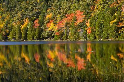 Autumn Reflections, Bubble Pond, Acadia National Park, Maine, Usa-Michel Hersen-Photographic Print