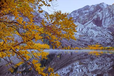 Autumn Reflections Lakeside, Convict Lake Mammoth California-Vincent James-Photographic Print