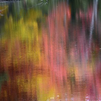 Autumn Reflections, Sheepscot River, Palermo, Maine, USA-Michel Hersen-Photographic Print