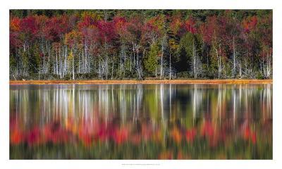 Autumn Reflections-Danny Head-Giclee Print