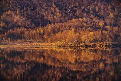 Autumn Reflections-Staffan Widstrand-Giclee Print