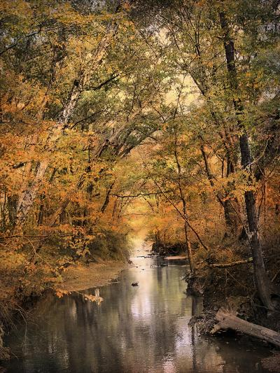Autumn Riches 2-Jai Johnson-Photographic Print