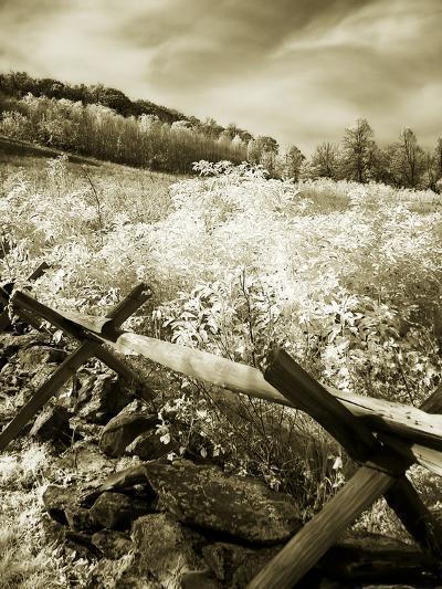 Autumn Ridge I-Alan Hausenflock-Photographic Print