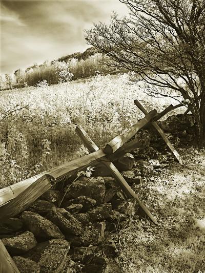 Autumn Ridge II-Alan Hausenflock-Photographic Print