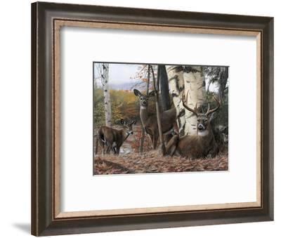 Autumn's Majesty-Kevin Daniel-Framed Giclee Print