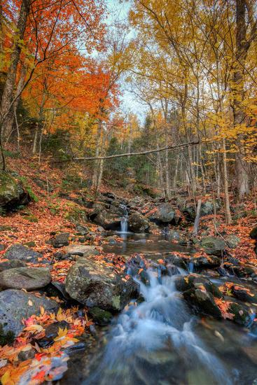 Autumn Scene at Beaver Creek, New Hampshire-Vincent James-Photographic Print