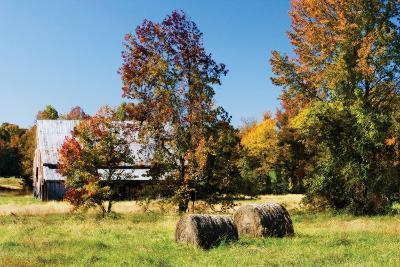 Autumn Scene I-Alan Hausenflock-Photographic Print