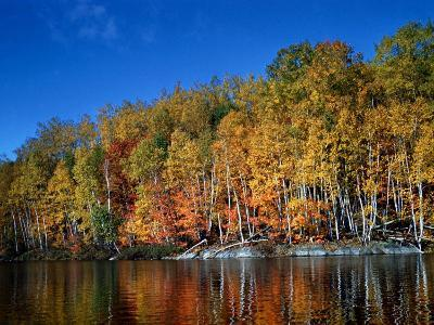 Autumn Scene in Northern Ontario, Canada--Photographic Print