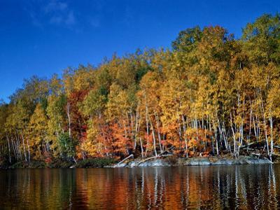 Autumn Scene in Northern Ontario, Canada