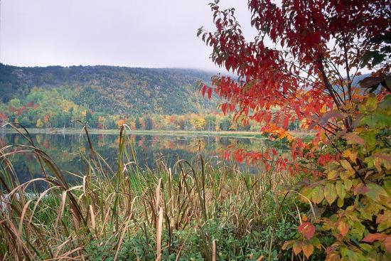 Autumn Scenic, Acadia National Park, Maine-George Oze-Photographic Print