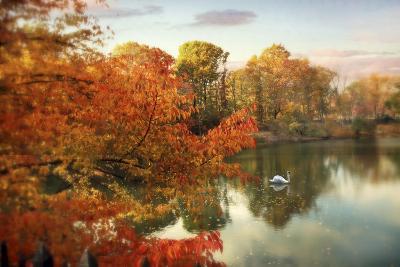Autumn Splendor-Jessica Jenney-Giclee Print