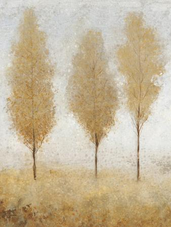 https://imgc.artprintimages.com/img/print/autumn-springs-i_u-l-q11au090.jpg?p=0