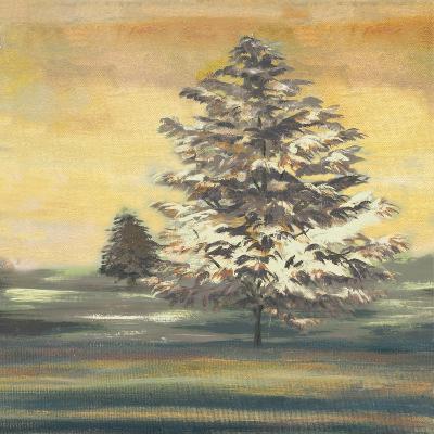 Autumn Sunset II-Margaret Ferry-Art Print