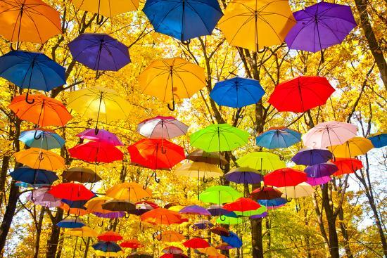 Autumn Umbrellas in the Sky-Oleksii Pyltsyn-Photographic Print