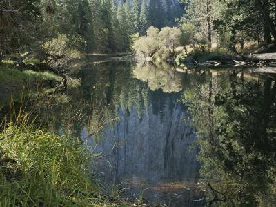 Autumn View Along the Merced River-Marc Moritsch-Photographic Print