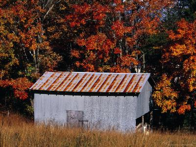 Autumn View of an Old Tin Barn at the Edge of the Woods-Raymond Gehman-Photographic Print