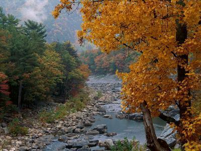Autumn View--Photographic Print