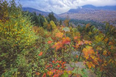 Autumn Viewpoint, White Mountains, New Hampshire-Vincent James-Photographic Print