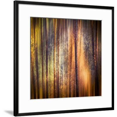 Autumn Walk-Ursula Abresch-Framed Giclee Print