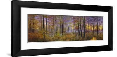Autumn Wolves-Bill Makinson-Framed Giclee Print