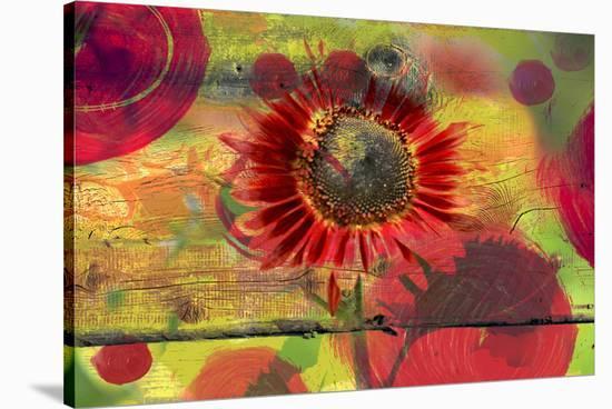 Autumn-Irena Orlov-Stretched Canvas Print