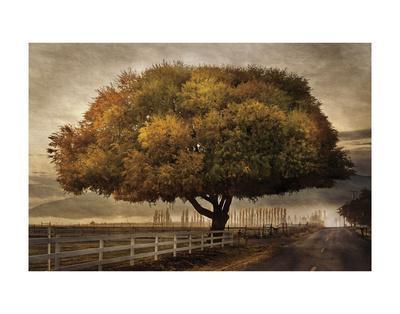 https://imgc.artprintimages.com/img/print/autumnal-landscape_u-l-f8c8nr0.jpg?p=0