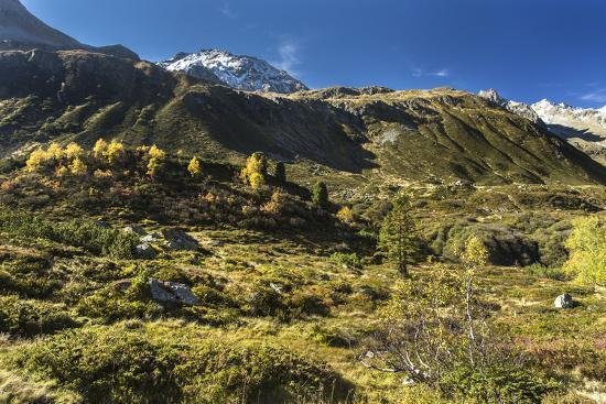 Autumnal Mountain World in the Silvretta-Jurgen Ulmer-Photographic Print