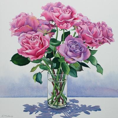 https://imgc.artprintimages.com/img/print/avalanche-roses_u-l-q1by57p0.jpg?p=0