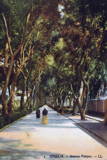 Avenue Poirpre, Ismailia, Egypt, C1900--Giclee Print