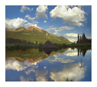 Avery Peak reflected in beaver pond, San Juan Mountains, Colorado-Tim Fitzharris-Art Print