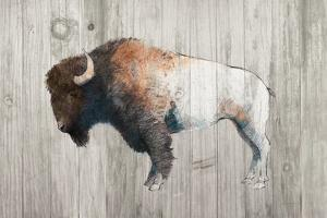 Colorful Bison Dark Brown on Wood by Avery Tillmon