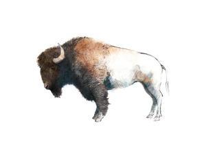 Colorful Bison Dark Brown by Avery Tillmon