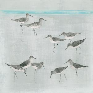 Sandpipers Gray by Avery Tillmon