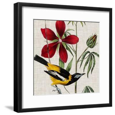 Avian Crop I-John James Audubon-Framed Giclee Print