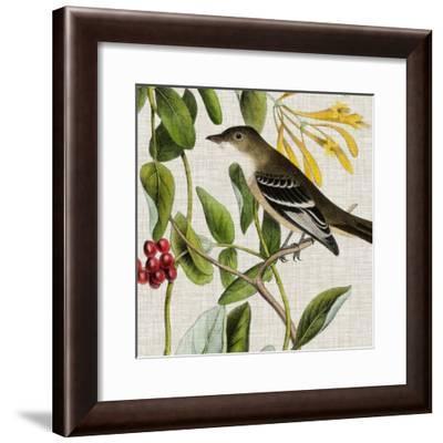 Avian Crop II-John Audubon-Framed Art Print