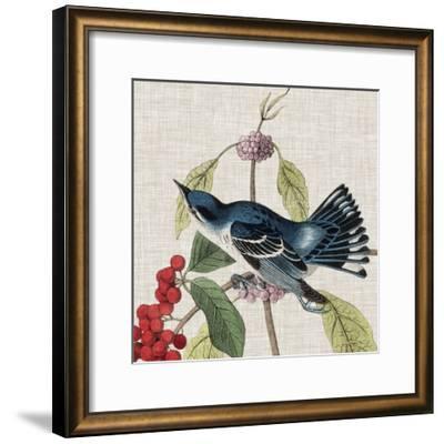 Avian Crop III-John James Audubon-Framed Giclee Print