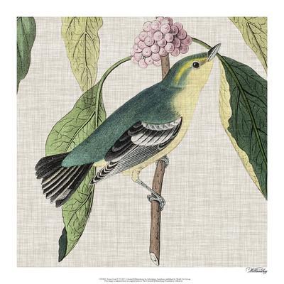 https://imgc.artprintimages.com/img/print/avian-crop-iv_u-l-f976p50.jpg?p=0