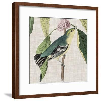 Avian Crop IV-John James Audubon-Framed Giclee Print
