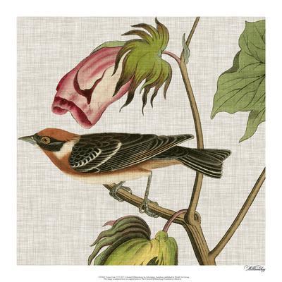 https://imgc.artprintimages.com/img/print/avian-crop-vi_u-l-f976r50.jpg?p=0