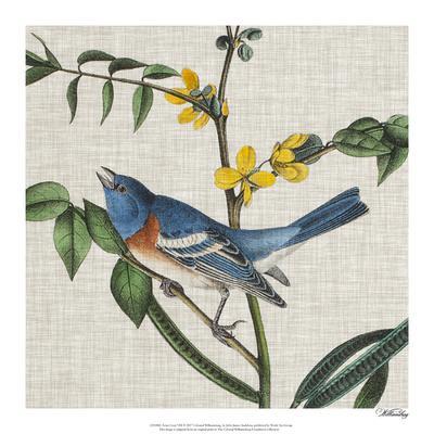 https://imgc.artprintimages.com/img/print/avian-crop-viii_u-l-f976r70.jpg?p=0