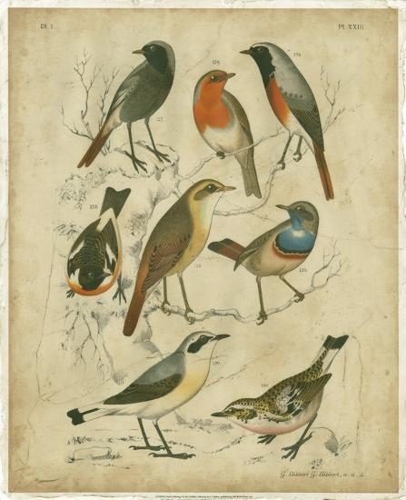 Avian Gathering I-G^ Lubbert-Art Print
