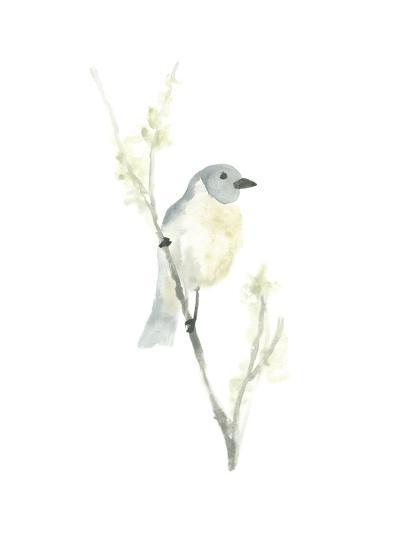 Avian Impressions III-June Vess-Art Print