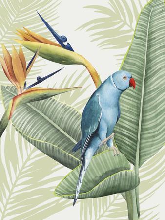 https://imgc.artprintimages.com/img/print/avian-paradise-iii_u-l-q12zn2r0.jpg?p=0