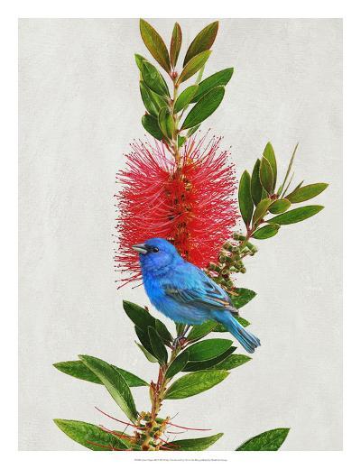 Avian Tropics III-Chris Vest-Giclee Print